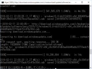MBSAを利用してオフライン環境下でWindowsUpdateを行う方法